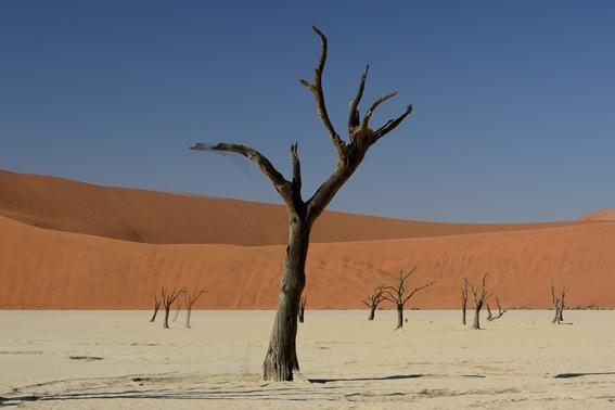 Namibia Rundreise Namib Wüste Ozeanien Tours