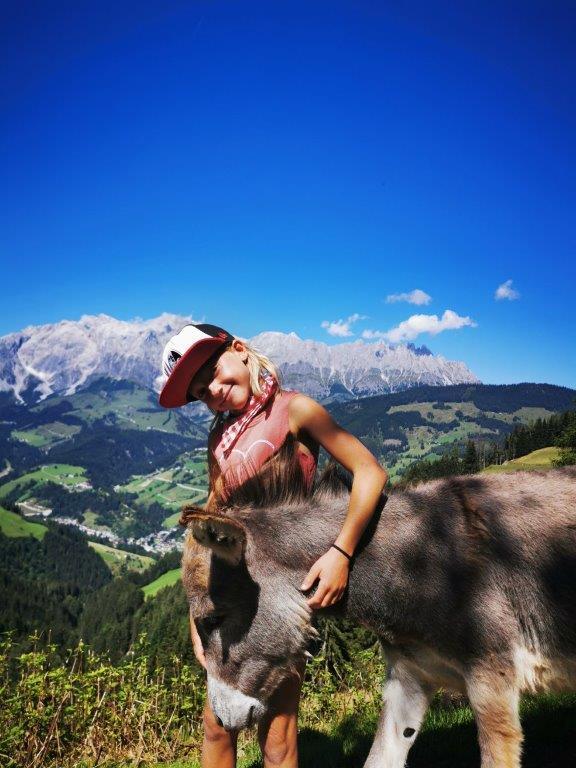 CluAldiana Hochkönig Bergmassiv Pronebenalm Esel Ozeanien Tours Österreich