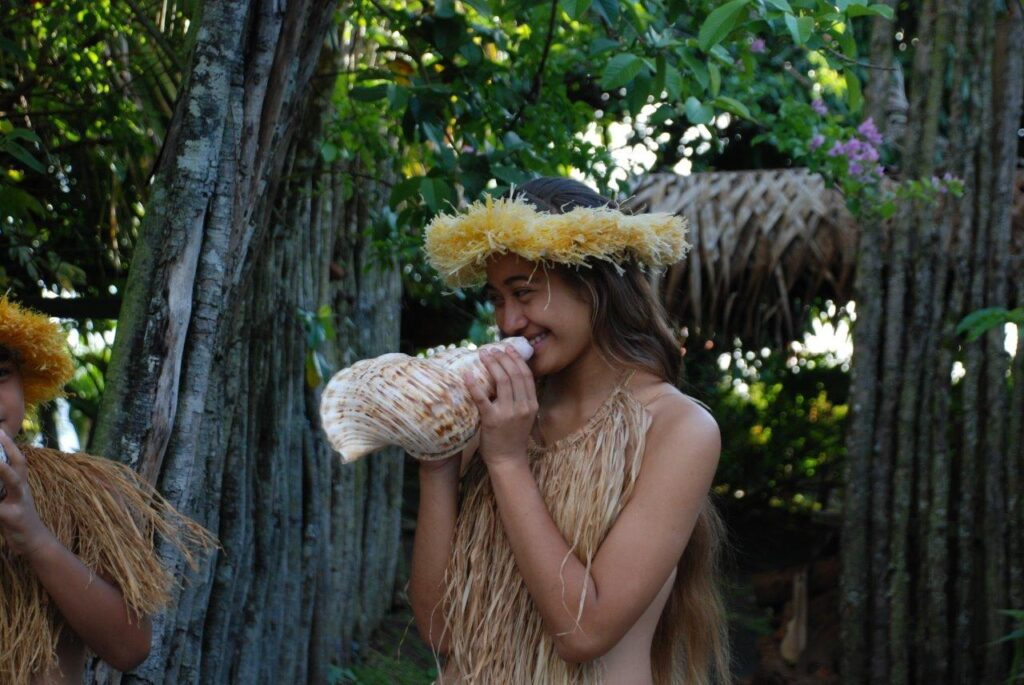 Cook Islands Rarotonga Muschel Ozeanien Tours